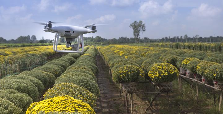 startup agroalimentaria dron sobrevolando campo