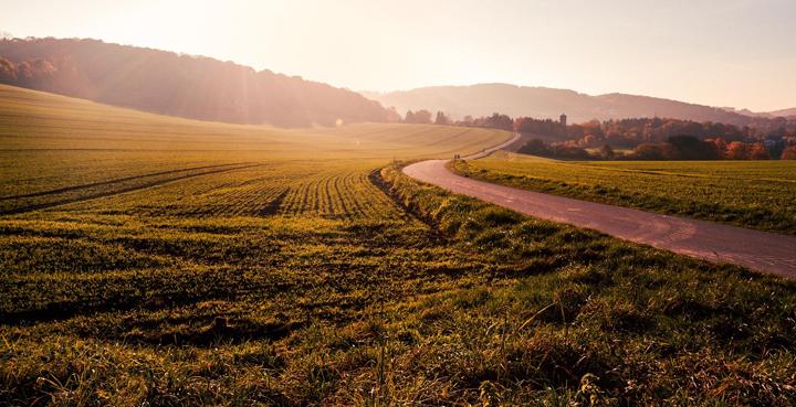 economia circular campo verde