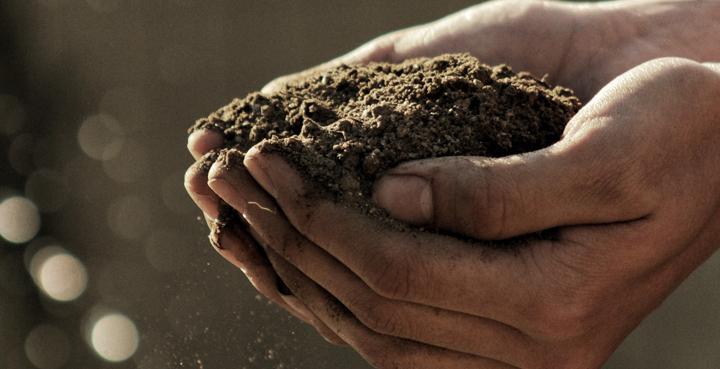 manos de hombre con tierra del campo alimentacion sostenible startups