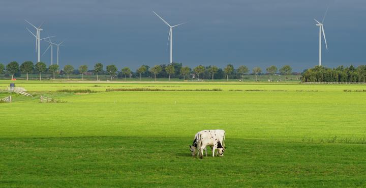 eficiencia energetica ganaderia