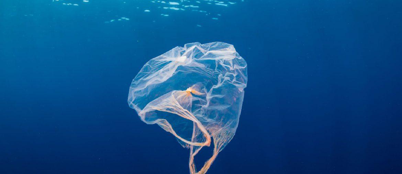 bolsa plastico flotando mar